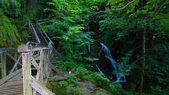Jankovac, jedna od najljepših gorskih dolina smještena je na sjevernim obroncima Papuka