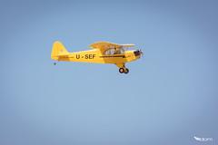 Piper J-3 Cub -16- (dominiquekt) Tags: radio nikon tunisia dom tunis sigma spitfire dominique piper rc enit khaled ulm aero avion spartan aircrafts planeur soliman c27j sliman d5200 touel felleli mezri