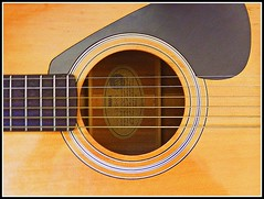 The Golden Guitar - Photo by STEVEN CHATEAUNEUF With Some Minor Editing Done - Photo Was Taken On July 10, 2015 And Was Edited On July 11, 2015 (snc145) Tags: design photo artistic creative yamaha soe frets autofocus editedimage flickrunitedaward stevenchateauneuf