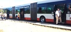 TRANSMETRO Ruta P-16 (ROGALI) Tags: bus cuba habana omnibus guagua daf biarticulado transmetro guaguasdecuba netherlandbus vanhoolagg
