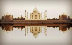 India - Uttar Pradesh - Agra - Taj Mahal - 34 (asienman) Tags: india agra tajmahal asienmanphotography mausoleum tomb mughalarchitecture uttarpradesh unescoworldheritagesite muslimart