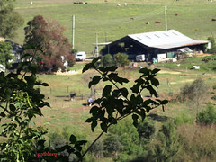 The Hawkesbury Valley (pat.bluey) Tags: australia valley newsouthwales 1001nights hawkesbury spiritofphotography 1001nightsmagiccity