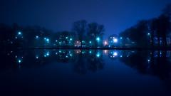 Reflections Are Slippery (trm42) Tags: trees blue sumu night helsinki evening dark reflection kaisaniemi finland cityscape fog lamps suomi streetlights