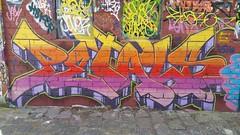 Petals... (colourourcity) Tags: streetartaustralia streetart graffiti melbourne burncity colourourcity awesome nofilters letters alphabet monsters alphabetmosnters wildstyle pets petals bunsen burners bigburners iloveletters colourourcityletters