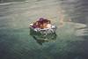 Ellanore011617-37 (MegzyTred) Tags: megzytred beta betafish viking funeral vikingfuneral fishfuneral deadfish goodparenting doingmybest kidsareweird lifeisstrange majesticfishfuneral majestic fish flames fire tinfoil foil boat water cremation burial burialatsea