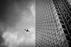 Tower (Richard Reader (luciferscage)) Tags: 2016 fuijifilmxt1 fujixt1 london october architecture city canarywharf andyestheaircraftwastherenotaddedlikeinaparticularcameramakerscompetitionifyouknowwhatimean bw bnw blackwhite mono monochrome monochrom cloud towercanadasquare diptych