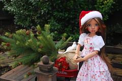 17th December (Little little mouse) Tags: tanlaryssa kayewiggs tansy bjd dollfie dressbyanne radioflyer