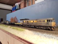 turbot in train (Trev 'Big T' Hurley) Tags: longlanewrd turbot
