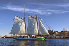 Liberty Clipper (Tim Pohlhaus) Tags: liberty clipper schooner sailing ship baltimore harbor fells point maryland