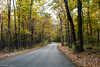 The end of the road is near (Justin P. Ross) Tags: nikon d500 2470 28 kentucky road fall leaves trees composition colors