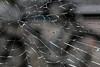 Cracked Pane (gripspix (OFF)) Tags: 20161007 ravensburg germany deutschland pane scheibe glass glas broken kaputt cracked gerissen texture textur