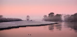 Pink Morning Light