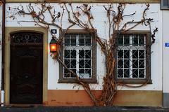 Doorstep in Basel (James Cassidy) Tags: basilea basel door doorstep porta albero tree swiss svizzera canon lanterna lantern finestre windows
