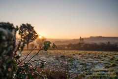 A Winter's morn (andrew benham) Tags: 2017 landscape winter brea cold cornwall country crisp enginehouse fields frost heritage mining morning nature sun sunrsie troon