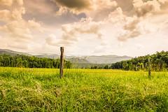 Fence Line (spierson82) Tags: cadescove fence greatsmokymountains greatsmokymountainsnationalpark landscape mountains summer tennessee vacation valley townsend unitedstates us appalachia appalachian appalachianmountains explore