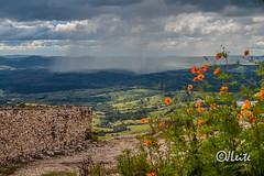 20060326-STome 91 (JJLeite) Tags: brasil ambiente américadosul manaus flores saothomedasletras amazonas chuva tempo am br bra estadodoamazonas mao nevando tempestadeciclônica saopaulo brazil
