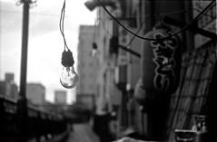 Untitled (shimanosu) Tags: leica ⅲf eimar 5cm tmax100 film bw monochrome street snap boken nagoya japan