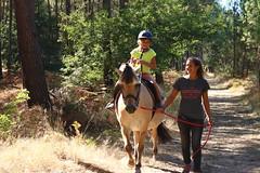 Cap Cauderoue (Albret Tourisme) Tags: accrobranche albret gascogne landes vtt poney canoë famille sudouest