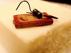 Say Cheese (weeloveminis) Tags: macromondays weeklytheme saycheese