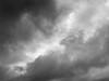 Duckling cloud (Zelda Wynn) Tags: duckintheclouds weather auckland cloudscape troposphere summer zeldawynnphotography artgallerynswcloudsinspiredbyalfredstieglitz equivalent newzealand