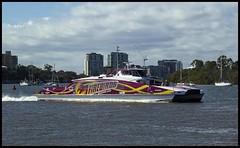Citycat FIREBIRDS go Queensland-1= (Sheba_Also Millon + Views) Tags: go queensland citycat firebirds