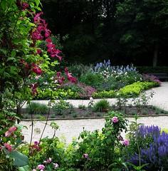 Rosengarten im Berliner Tiergarten (langkawi) Tags: park berlin colors garden colours blumen oasis tiergarten rosengarten berliner farben blüten groser grosstadtoase