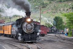 DSNG482YardDurangoCO6-13-15 (railohio) Tags: colorado trains steam durango narrowgauge riogrande d90 durangosilverton dsng 061315