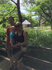 "Family at the Brookfield Zoo • <a style=""font-size:0.8em;"" href=""http://www.flickr.com/photos/109120354@N07/19810192378/"" target=""_blank"">View on Flickr</a>"