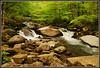 Oconaluftee River - Explore #91 (Jerry Jaynes) Tags: park mountains water river waterfall nationalpark nc rocks northcarolina riverrocks greatsmokymountainsnationalpark gsmnp oconalufteeriver oconalufteevisitorcenter tripodphotography nikkor1685vr nd8xfilter
