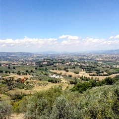 #Montefalco, #Umbria, #Italy (GajasssL) Tags: trees summer italy green love nature landscape umbria montefalco