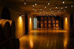 cellar (Reko) Tags: canada zeiss 50mm sony niagara a7 sonnar 50f15