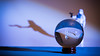 Trooper and Globe (Billy Woolfolk) Tags: olympus omd em1 m43 microfourthirds mft starwars crystal ball globe space still life stormtrooper オリンパス スターウォーズ ストームトルーパー クリスタルボール 宇宙 ライトペインティング light painting