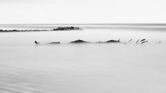 au plus simple (glookoom) Tags: bw blanc blackandwhite black monochrome mer noiretblanc noir nature lumière light landscape ligne paysage plage white bois arbre minimaliste effet extérieur exposition temps