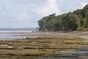 Costa Rica (jorge.cancela) Tags: costa rica corcovado landscape paisaje