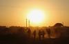 Big Sun (Alex L'aventurier,) Tags: pushkar inde india rajasthan désert desert sun soleil camel fair chameaux dust poussière silhouette sky ciel people personnes sunset