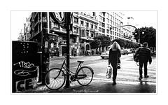 - Paso Peatones / Pedestrian Crossing - (-Montxo-) Tags: valencia españa spain street squareformat square shopping sol señora señor bicicletas señales trafico photography europa blanco black bw white wb
