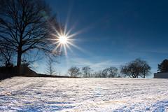Sun over snow fields (martin.mois) Tags: winter snow sun sunflair bochum blue sky