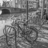 IMG_1109 (digitalarch) Tags: 네덜란드 델프트 nederland delft 자전거 bicycle netherlands