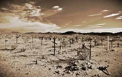 will you remember me? (BillsExplorations) Tags: cemetery sepia graveyard cross marker old forgotten vintage route66 desert bnsf ludlow california closed 66 highway field clouds sky ghosttown grave remember