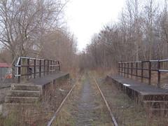 DSCN5221 (TajemniczaIstota761) Tags: abandoned railway viaduct wiadukt kolejowy