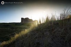 Castle Bamburgh, Northumberland (Silent Eagle  Photography) Tags: sep silent eagle photography silenteagle09 silenteaglephotography castle castlebamburgh northumberland northeast sunset plants sky sun iso50