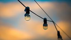 Frozen bulbs (photomatic.se) Tags: ifttt 500px lightbulbs snow winter colorful sweden stockholm lights