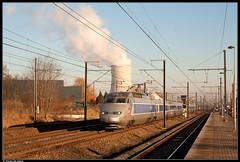SNCF 4519 @ Ruisbroek (Steven De Haeck) Tags: ruisbroek lijn96 lijn96n tgv hst réseau nmbs sncb sncf vlaamsbrabant belgië belgique brussel zuid bruxelles midi marseille