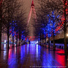 Festive London Eye (Splendid What) Tags: cityscape london londoneye night nightscene nightshot rain riverthames southbank wet christmaslights festivelights xmaslights decorations decorativelights relections pavementreflections riversidewalk queenswalk