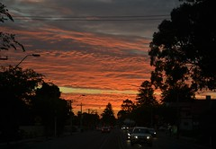 Summer Sunset (davidbailey12) Tags: sunset warm summer henley beach road tree cloud sun orange warmth car lights reflection