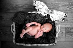NewBorn en gezinsfotografie van PaulOudFotografie (13)