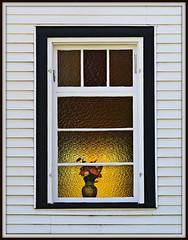 Church Window (Doris Burfind) Tags: flowers church window architecture stainedglass wellington vase