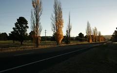 Kosciusko Road, Berridale NSW