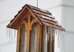 backyard feeder with adornment (karma (Karen)) Tags: baltimore maryland home backyard feeder icicles texture 4winter topf25