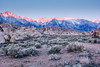 Sunrise in Alabama Hills (bryananphoto) Tags: alabamahills camping desert earlymorning easternsierras highway395 lonepine mountwhitney mountains nature outdoors sunrise canon 1740mm wideangle